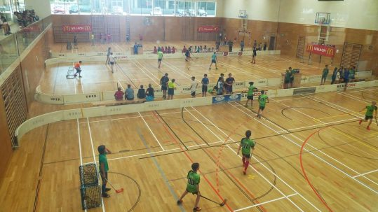 Floorball 2017 (1)